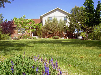 Desert Hills Bed & Breakfast